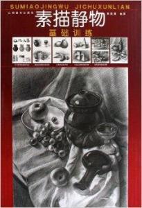 《素描静物基础训练》从素描静物画法训练的基本知识开始,高清图片