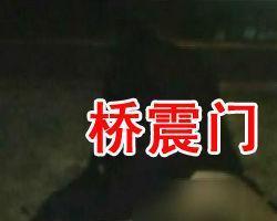 南阳桥震门背景音乐_桥震门(南阳仲景大桥桥震门) - 搜狗百科