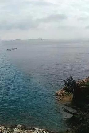 深圳三门岛 露营 抓海胆 挖螃蟹