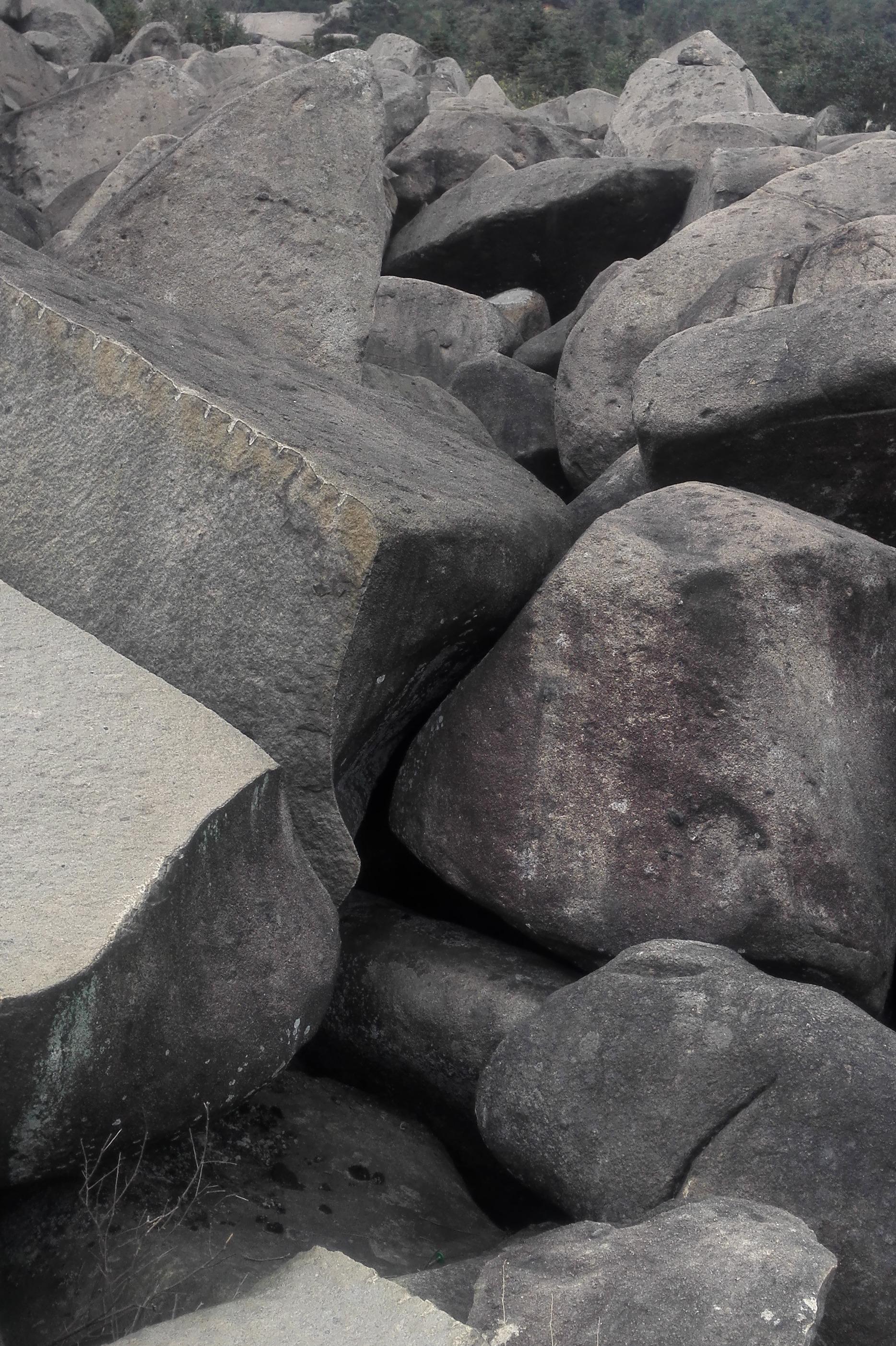 11月15日 登新干燥石山