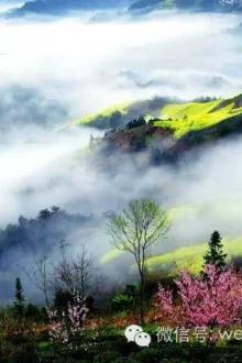 3月20-22日皖南春色之歙县石潭-江西婺源三天摄影之旅