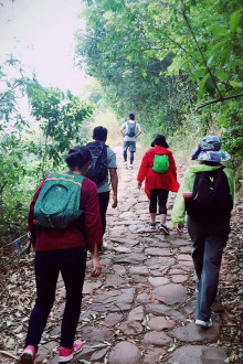 6月5日走腊梅坡茶马古道单程十四公里
