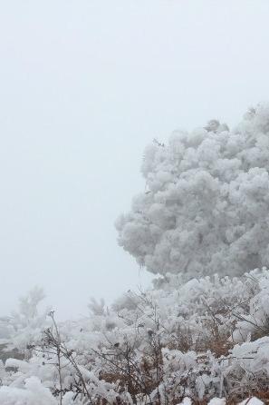 挑战雪峰山苏宝顶