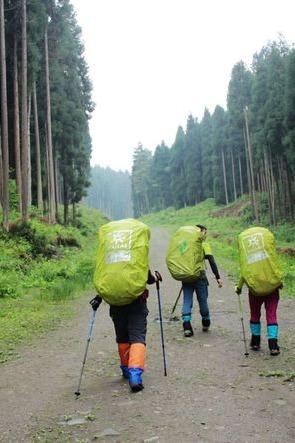 鸡冠山徒步,12月17号走进离成都最近的原始森林