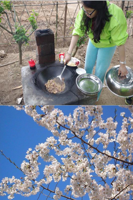 3月17号 樱桃沟中赏樱花,野炊休闲踏青