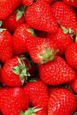 驴友之家—刘家峡踏青摘草莓