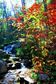 狼牙户外10月29日周六九如山瀑布群风景区一日游