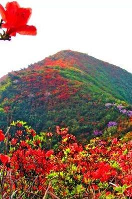 五一节丹寨龙泉山高要梯田徒步