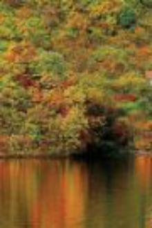 丹东蒲石河看枫叶一日游