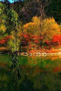 ;问道户外乌龙峡谷- 硅化木- 滴水湖欢迎新人