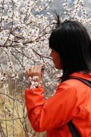 阳春三月太谷棋盘山桃花谷一日游