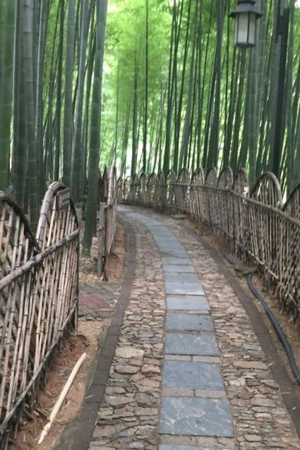8月23日相约虞山氧吧宝岩生态园休闲运动游召集