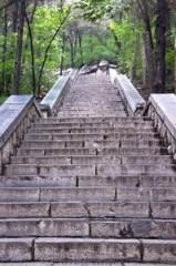 7月10日休闲徒步:英雄山后山-美食街-泉城公园