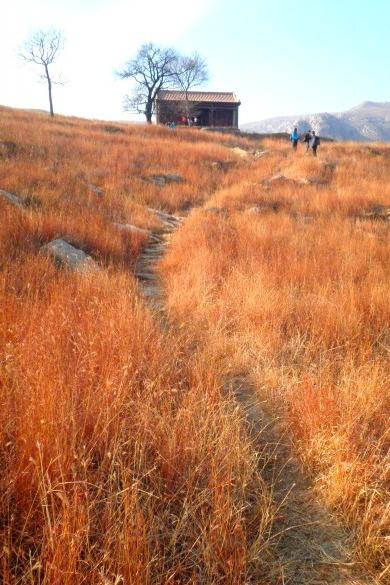 【野疯】11月1日娘娘庙-金山寺-莲花峰-满金峪穿越