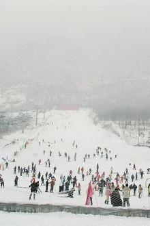 """""""我和冬天有个约会""""——九顶山滑雪"""