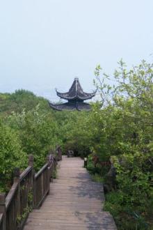 5月11日灵树 自我挑战登山徒步
