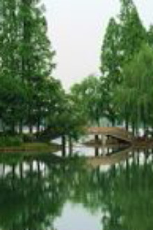 杭州一日游