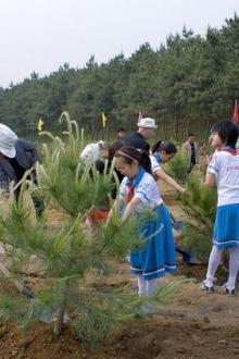 植树活动召集人员中