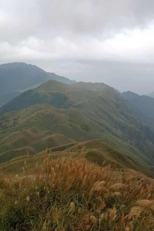 """11月1日 惠东大南山——去看那最美的""""山顶草原"""""""