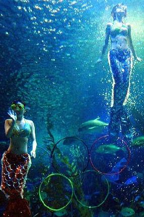 激情夏日-长沙海底世界+水上乐园一日游