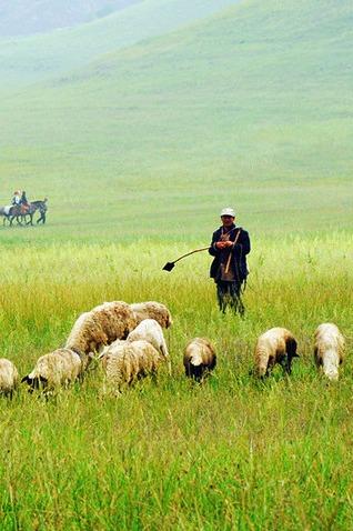 【北京百灵鸟户外】纵马欢歌大草原,篝火狂欢送烤全羊