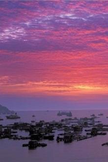 上川岛浪漫之旅