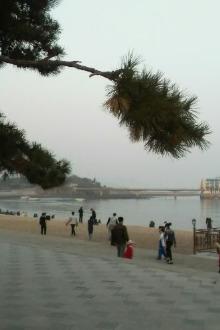 相约黄昏后·漫步星海湾