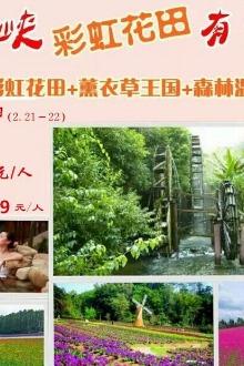 21-22号大年初三初四盘龙峡彩虹花田+薰衣草二日游