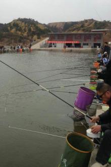博爱县第一届征战杯钓鱼比赛