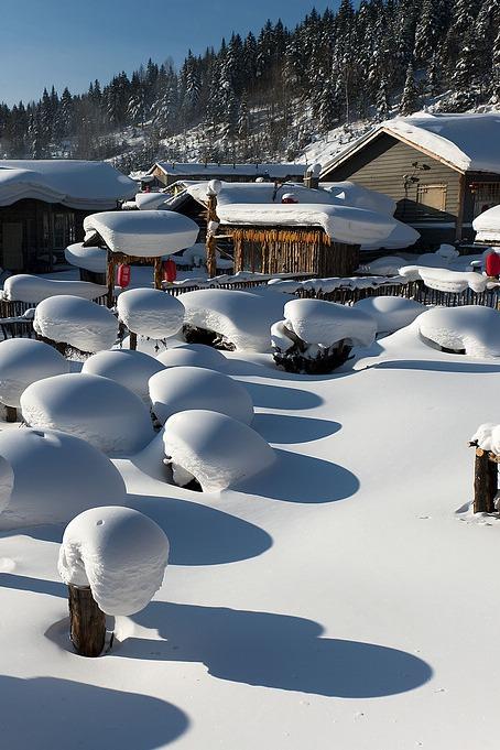 冬日雪乡7日经典赏雪游1月6日-12日