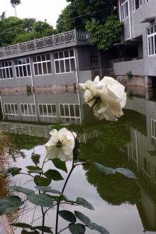 徒步甘泉明珠花园