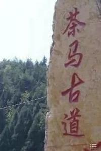 穿越茶马古道(溪口—-走马)