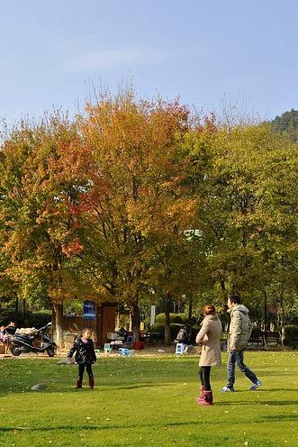 兰山登顶赏秋,快乐健身