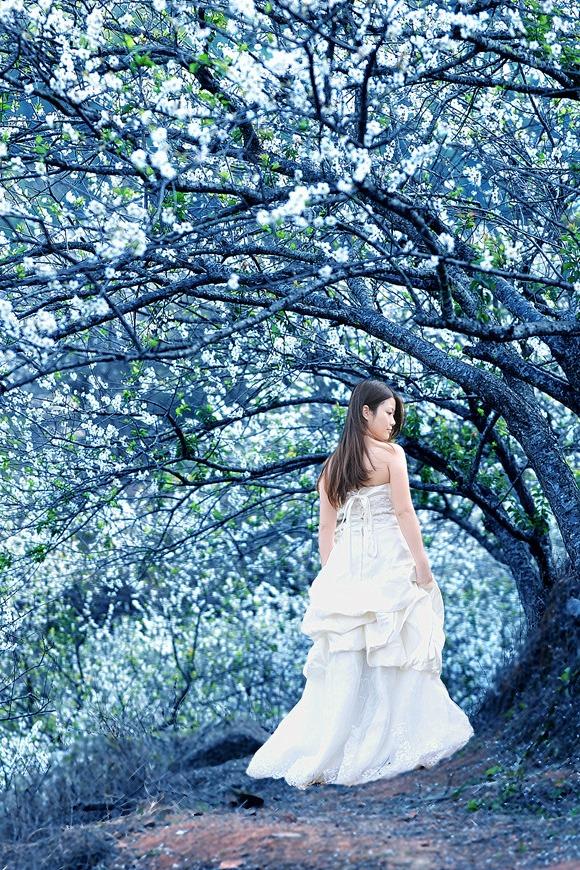 1月8日竹林穿越,从化寻梅,寻找原始村落溪头的美丽