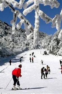 (星辰户外) 重庆金佛山滑雪,泡温泉,爬山玩雪