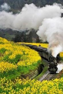 穿越世纪的文明记忆—犍为嘉阳小火车一日自驾游