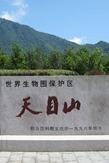 国家重点风景名胜—天目山一日游(特价100元/人)