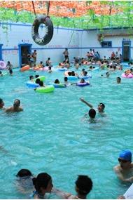 游泳—沙井中心公园游泳池