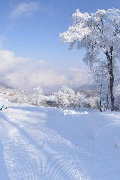 【周末九顶山2日游】冰雪童话世界 云端上的羌寨