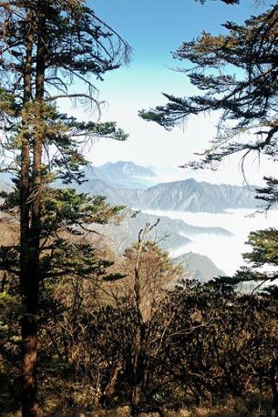 【周日西岭山一日游】10月16日 徒步西岭雪山