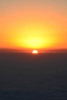 重阳节登高千佛山看云海看日出–采茱萸