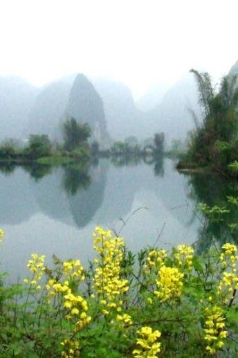 3月20日徒步烟雨遇龙河+油菜花萝卜花桃花一日游