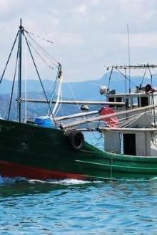 7月23-24日滨海鲤鱼门,海边游泳,出海打鱼,
