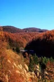 万山红遍正当时,秋色古风鄂西南两日半自驾