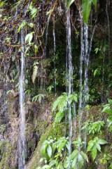 瀑布、石林一日游