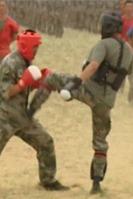 散打泰拳特训  强身健体 防身自卫