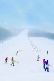 一起滑雪吧丶