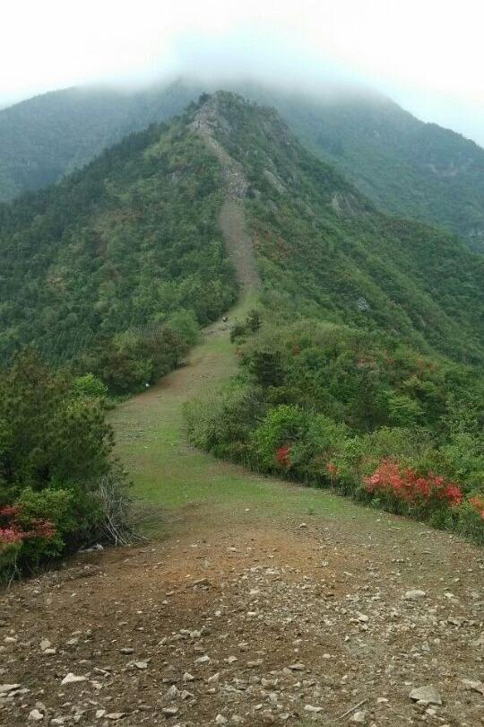 Q10月25日台州大雷山一日环线(下雨活动延期)