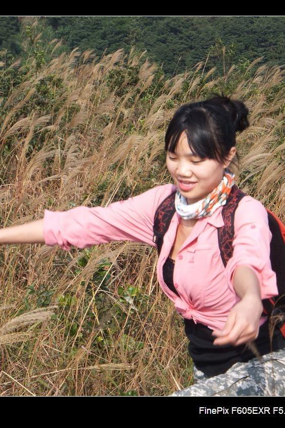 12月4日,白云嶂看满山金黄大草坡
