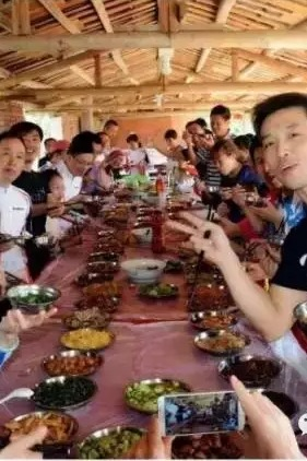 亲子活动:10月31日吃摘桔子、吃长桌宴、看最大娃娃鱼